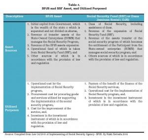 16 Financing Social Protect INA_Rizki Estrada_INISIATIF 4