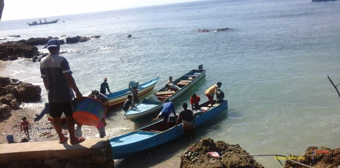 Cari-Pendaratan-Ikan-di-P.Ambon-01