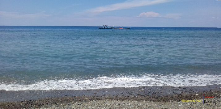 Cari-Pendaratan-Ikan-di-P.Ambon-04